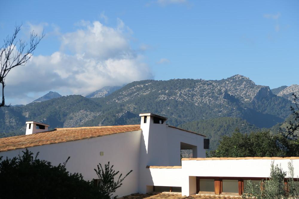 back view serrania.jpg
