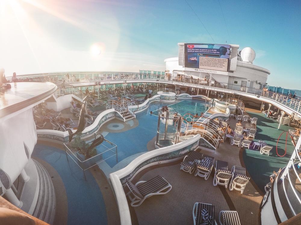 Cruise 3.jpg