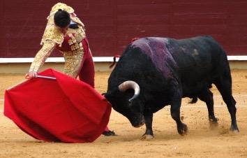 Assess Progress like a Bullfighter