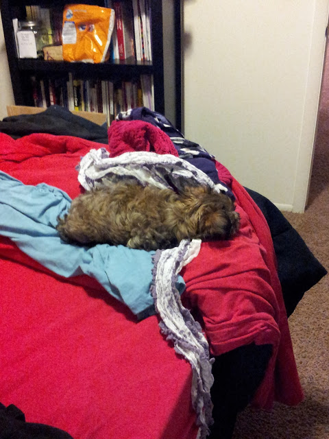 Laundry Sleeper