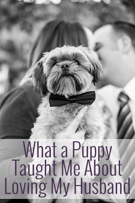 What having a dog has taught me about marriage