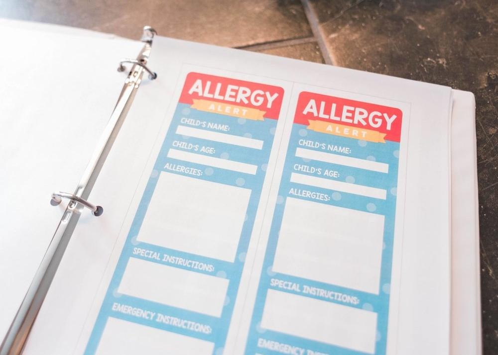 Allergy information sheet for babysitter.