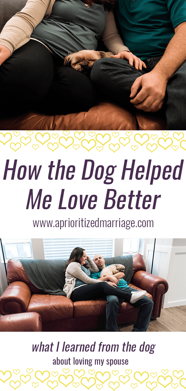 Watching the way my dog loves my husband has taught me a few things about how I can love my husband better.