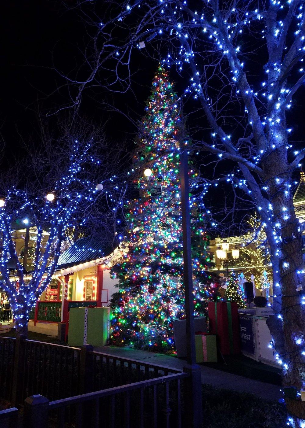holiday lights date night