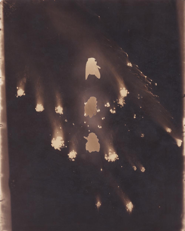 Comet Bumble