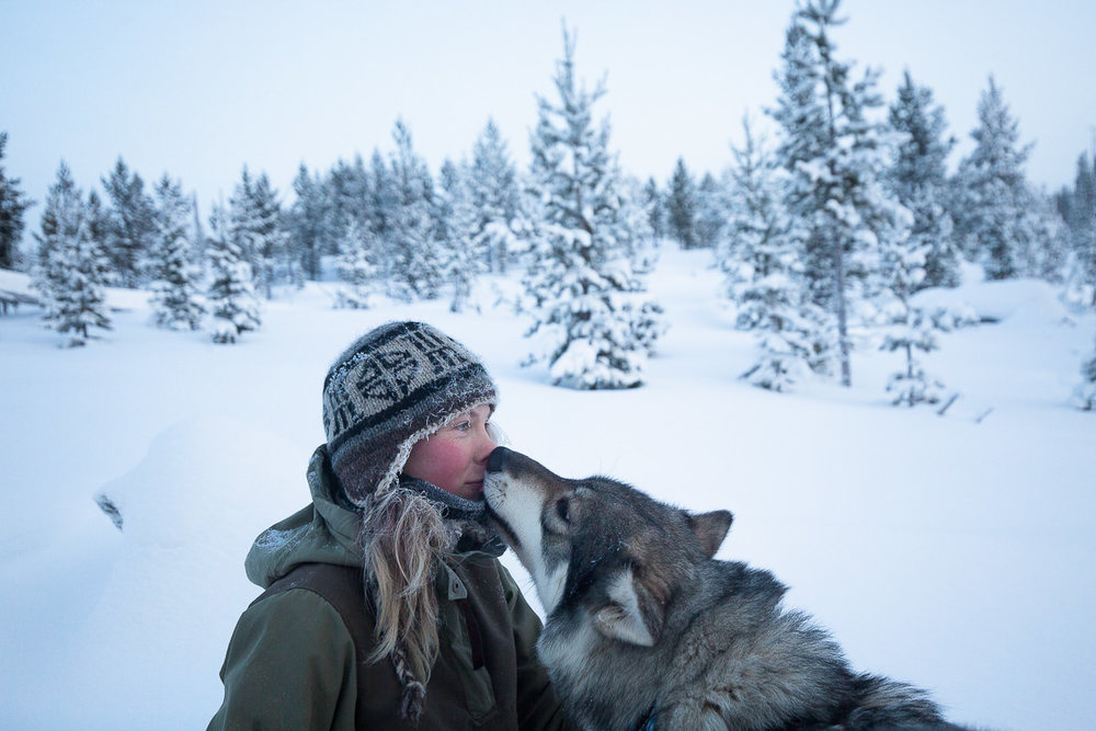 Briceportolano_Finland_Site_01.jpg