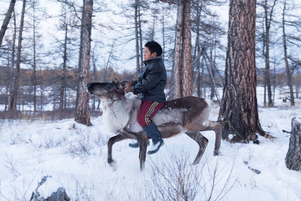 Briceportolano_Mongolia_Zaya_14_Site.jpg