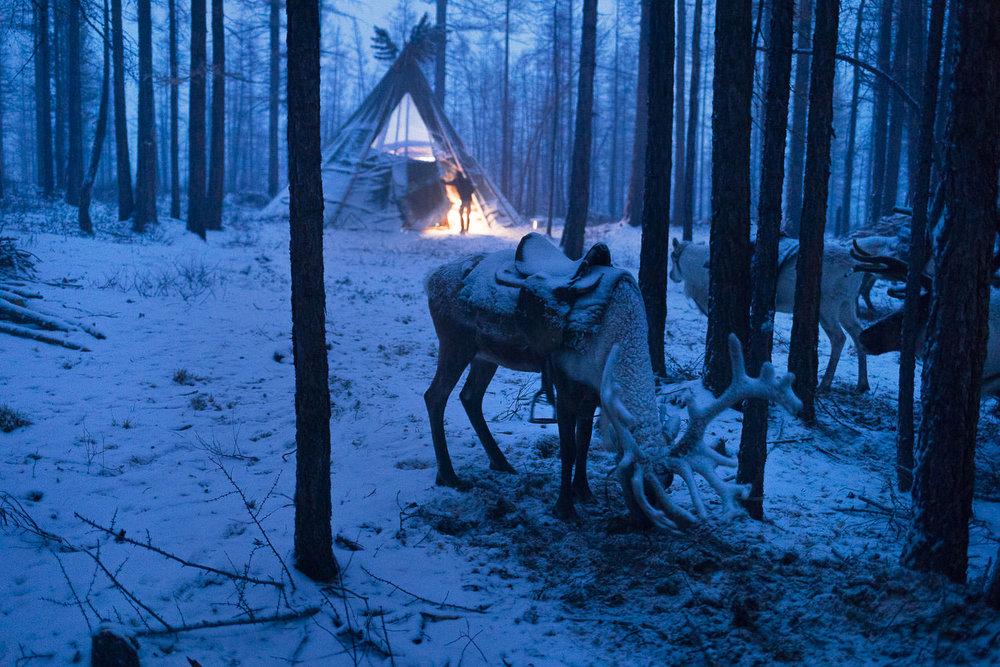 Briceportolano_Mongolia_Zaya_15_Site.jpg