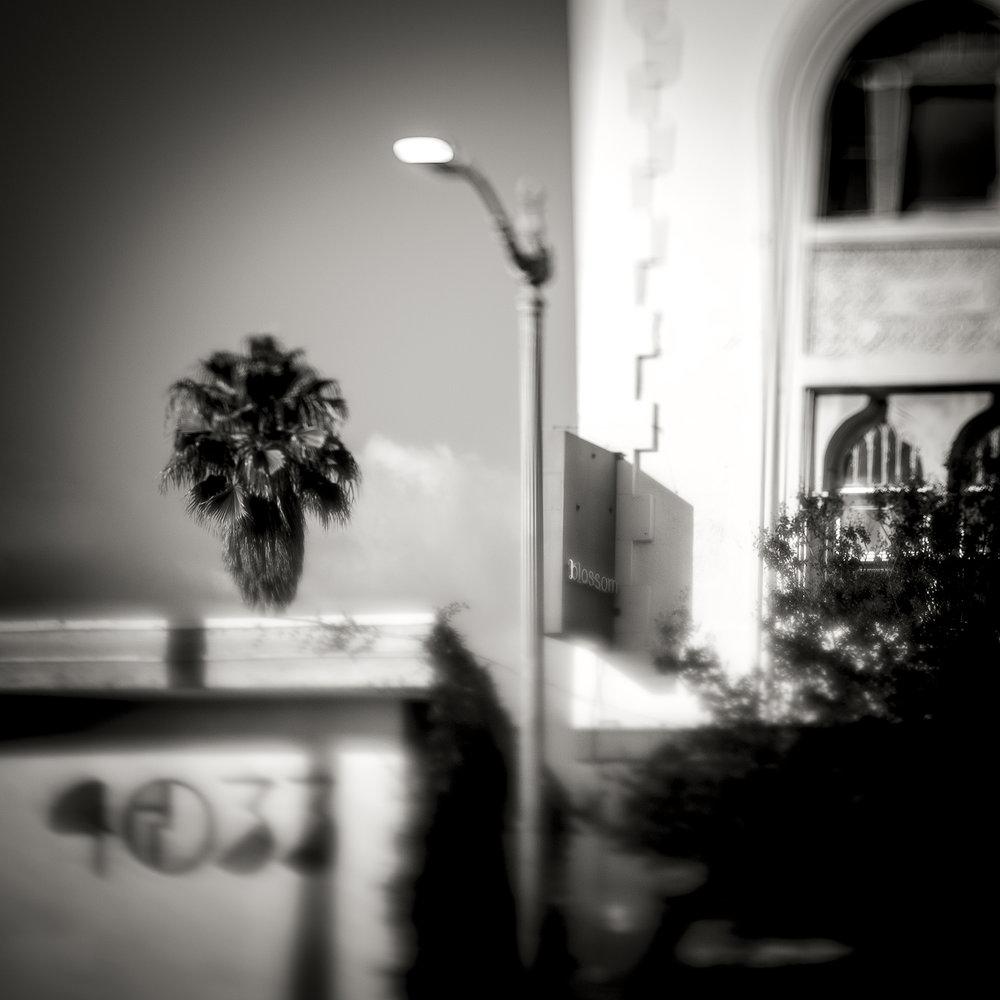 Untitled_7837.jpg
