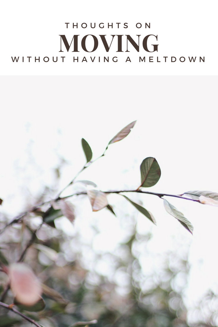 Thoughts on Moving without having a Meltdown