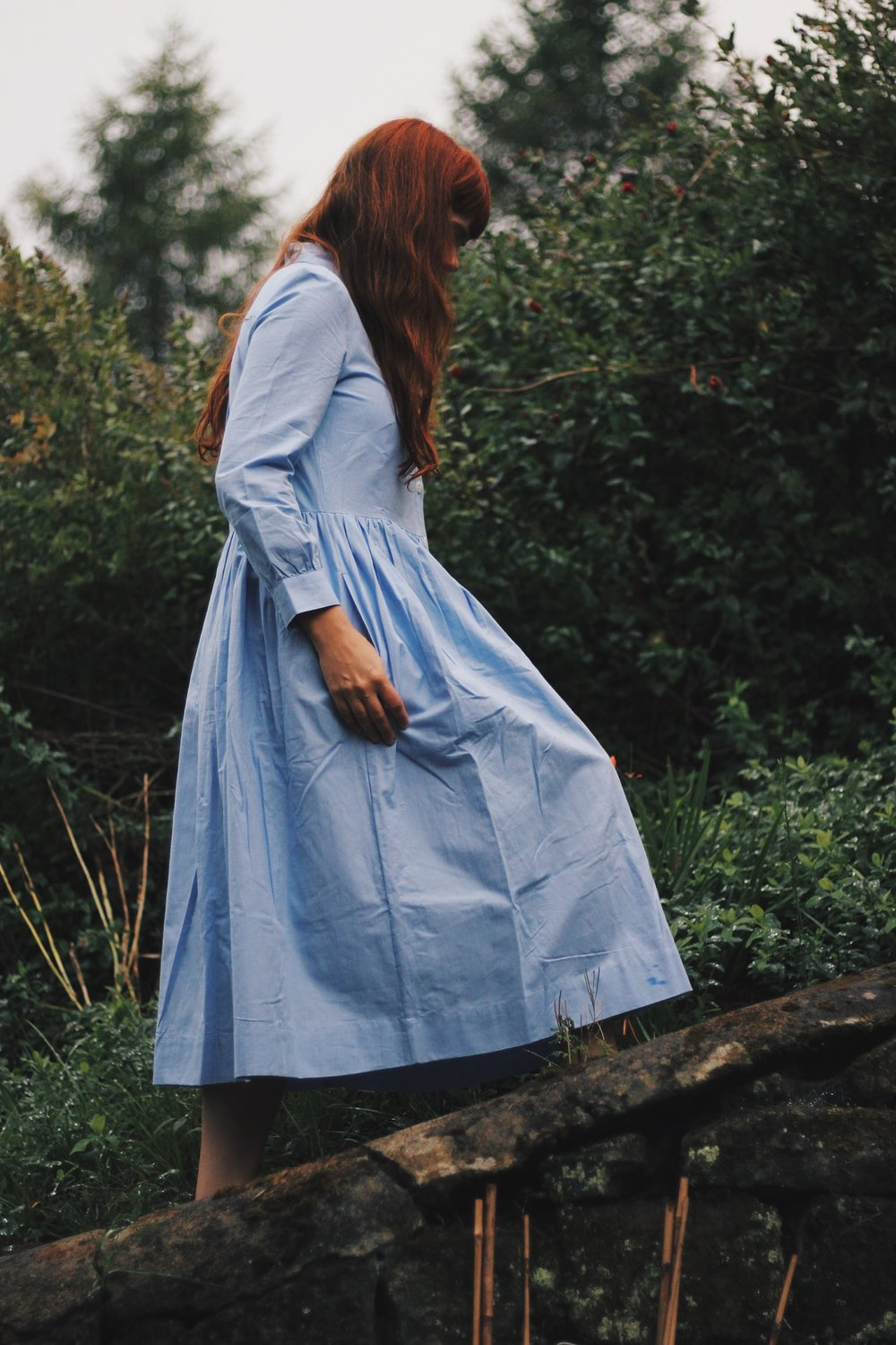 Toast dress, blue shirt dress