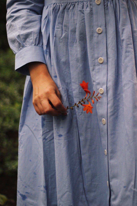 Toast dress, blue shirt dress
