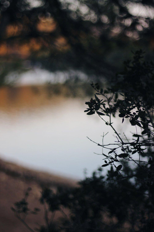Mljet lake, Autumn