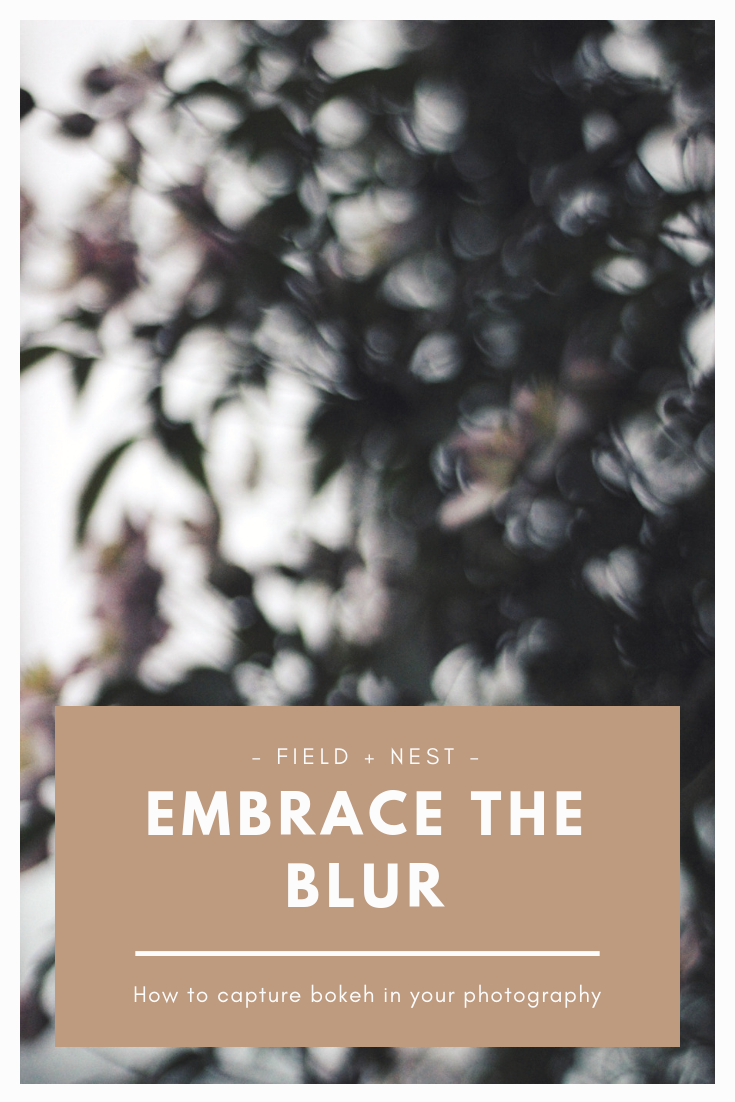 Embrace the Blur | How to capture Bokeh in your Photography