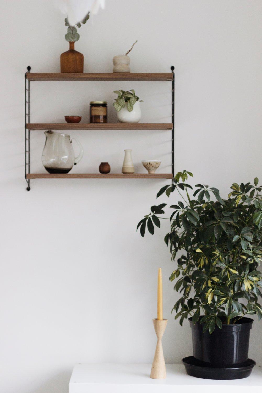 Mid-Century interiors, Shelfie, Plants