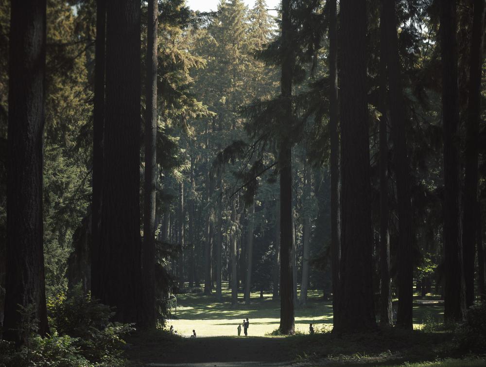 Portland Park.jpg