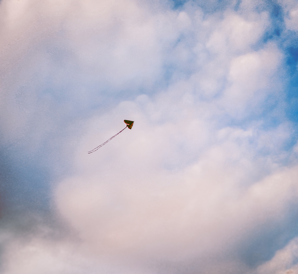 A lonely kite off Tybee Island, a favorite spot for my family in the summer.
