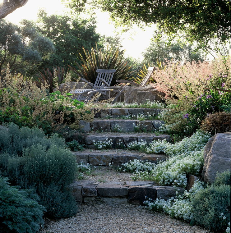 Machado Landscaping Woodland Ca : This casual woodland garden contains mostly california native and