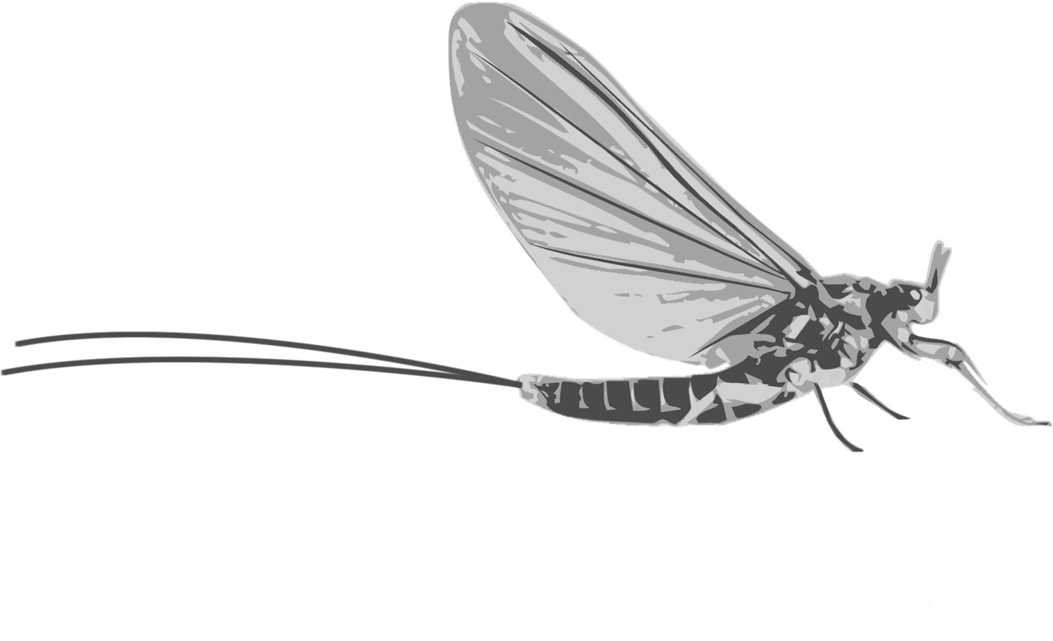 West Branch Angler Resort