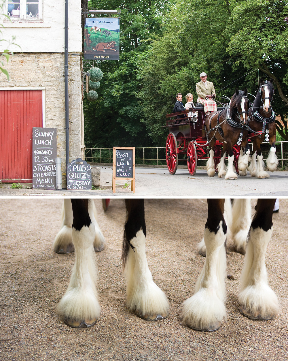 wedding-horse-drawn-carriage.jpg