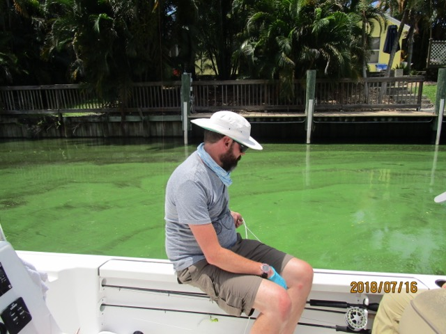 Dr James Metcalf samples from a cyanobacterial bloom in Florida in July, 2018.