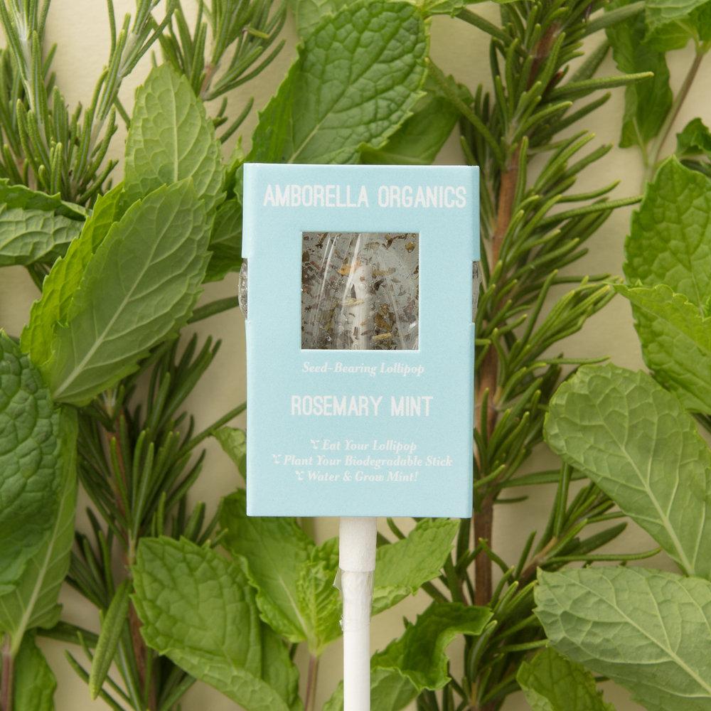 Rosemary Mint 01 (1).jpg