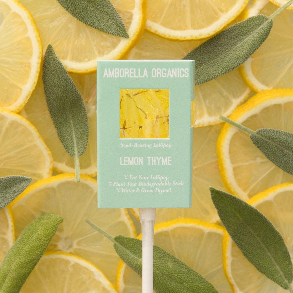 Lemon Thyme 01.jpg