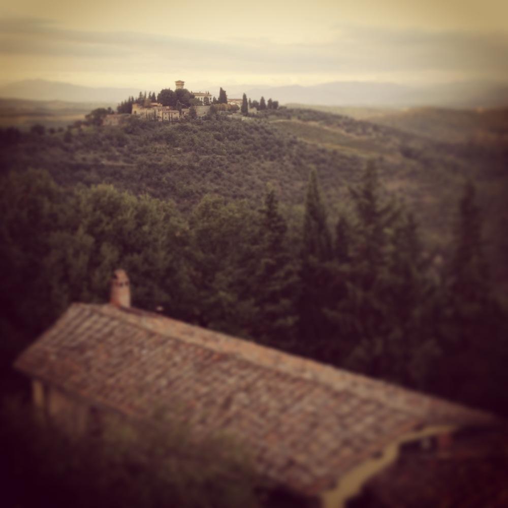 From the Castello di Verrazzano winery in Chianti.