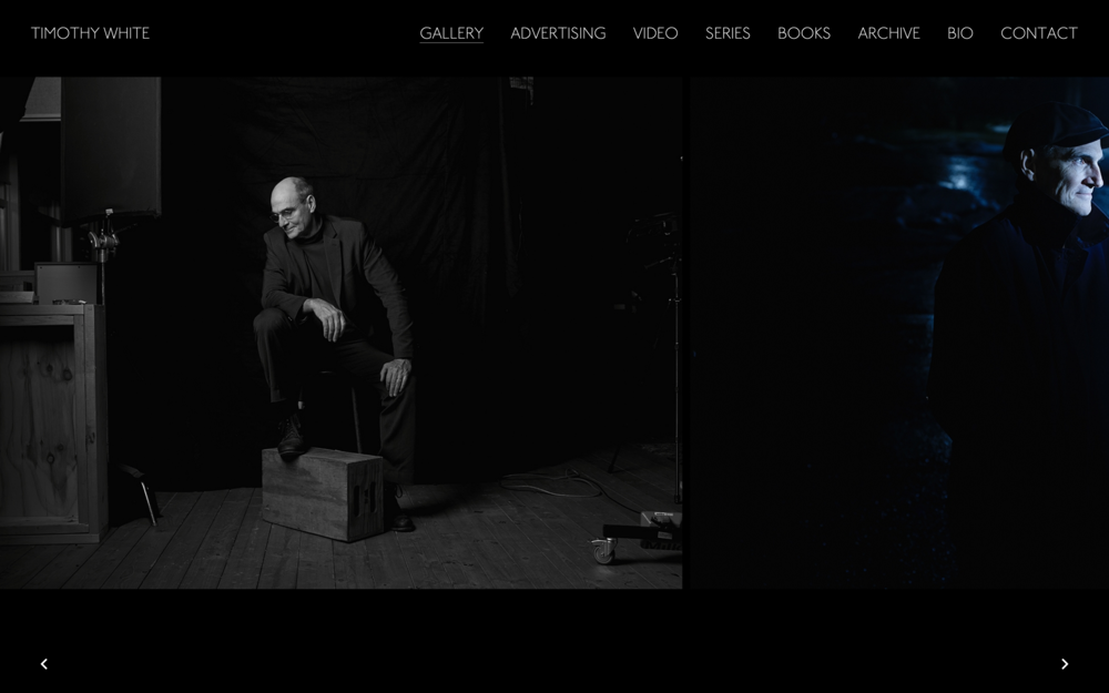 Website for Timothy White. Special feature includes archive search page.