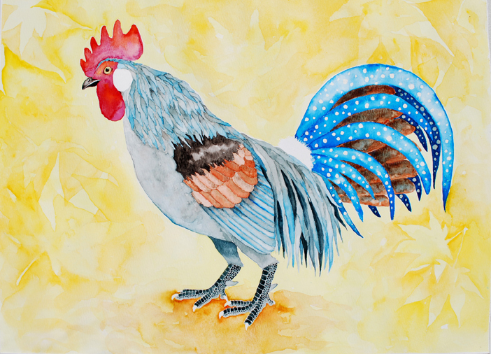 Cockerel, Watercolor on Paper