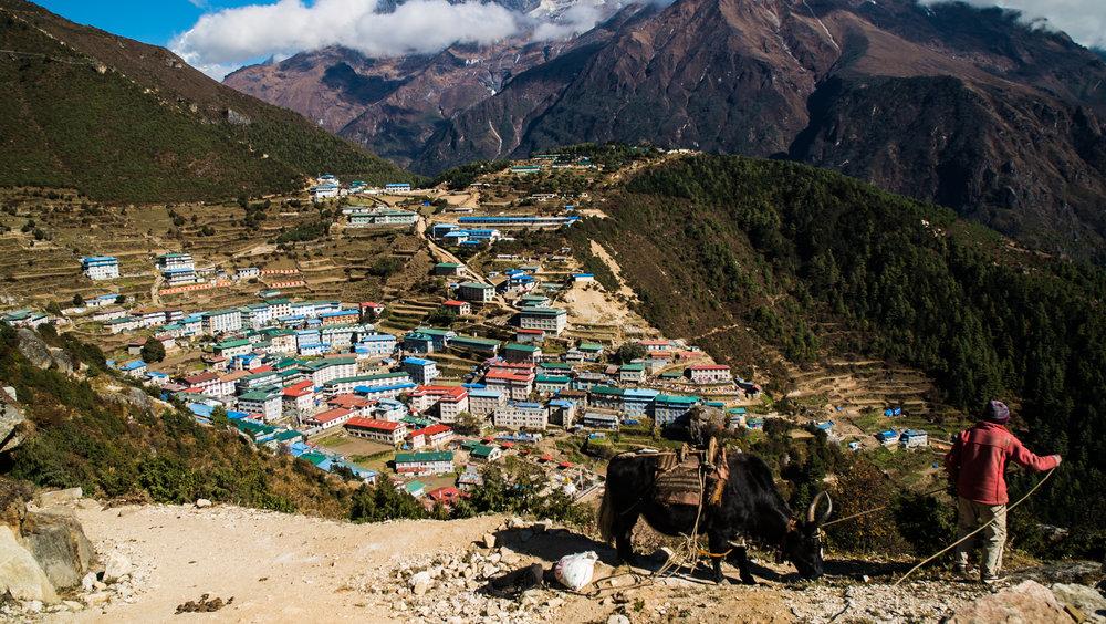 Nepal DNA 2016-108.jpg