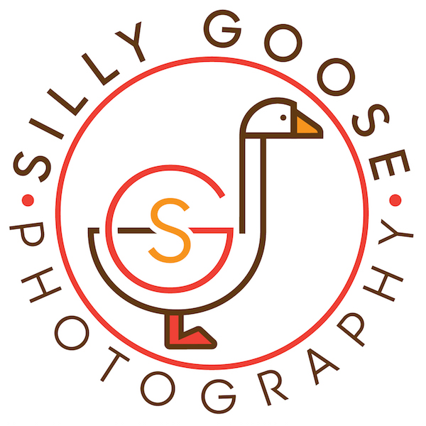 SillyGoose_CircleBadge.jpg