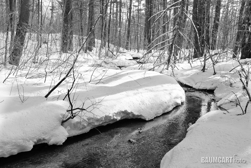 Black and White Snowy River