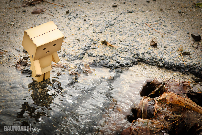 Danboard Spring Thaw