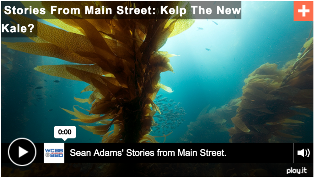 Kelp is the new Kale