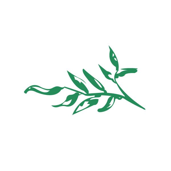 seed_green.jpg