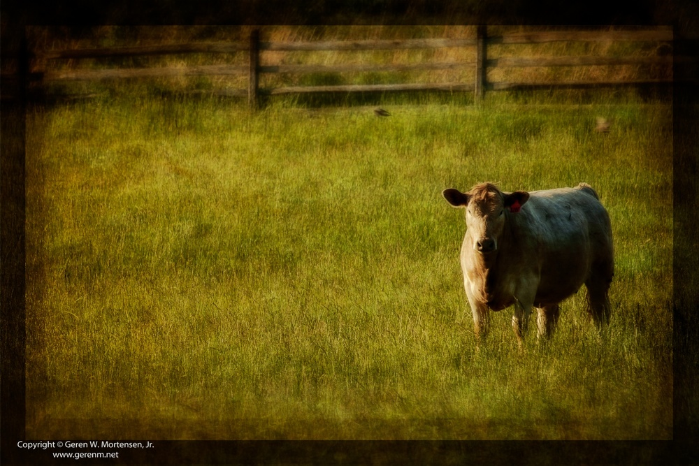 Gettysburg-Grunge_May-31-2014_07.jpg