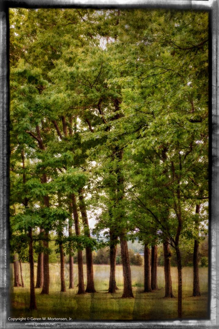 Gettysburg-Grunge_May-31-2014_11.jpg