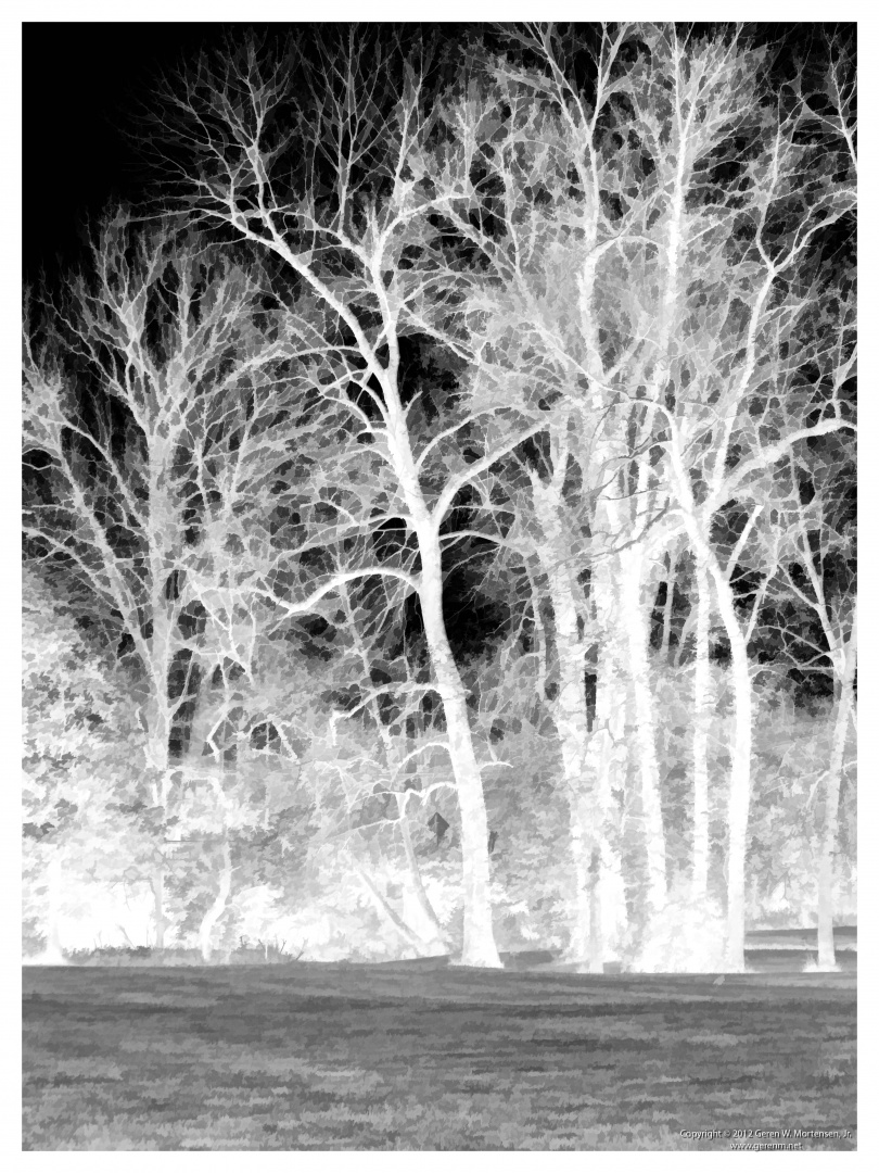 Simply Trees (negative)
