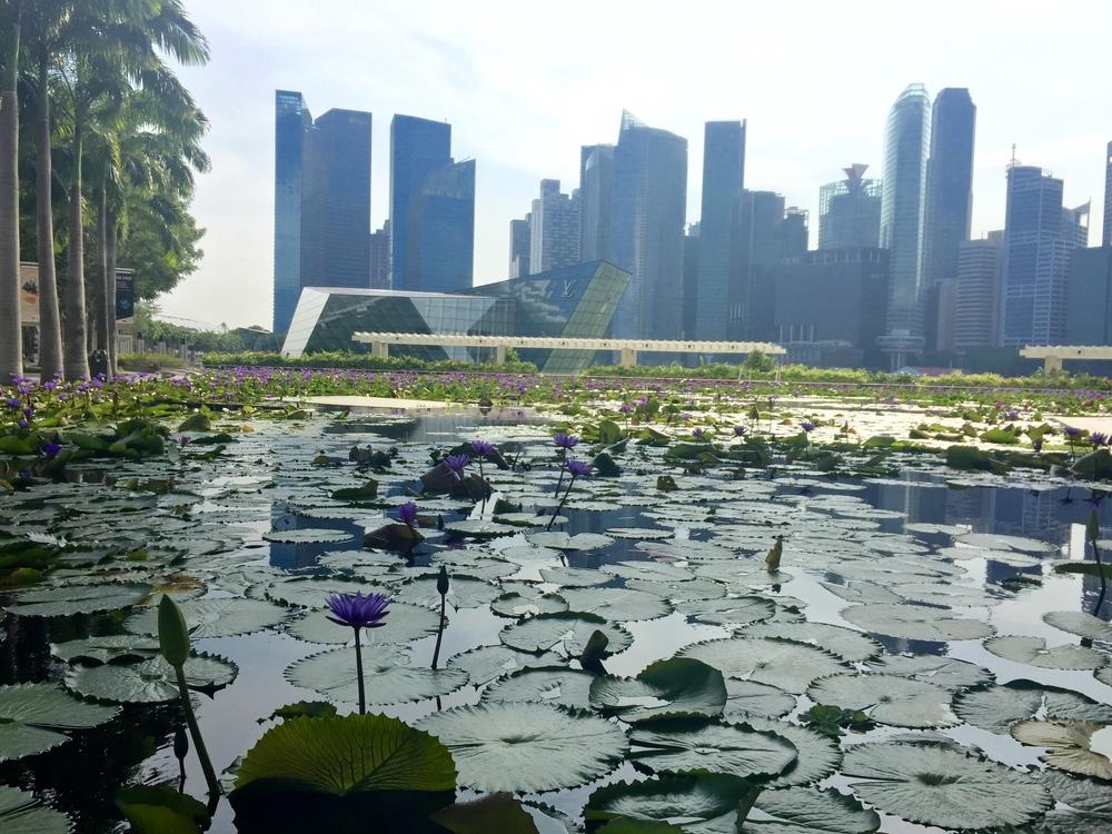 Batik&Bubbles_Singapore_lilies