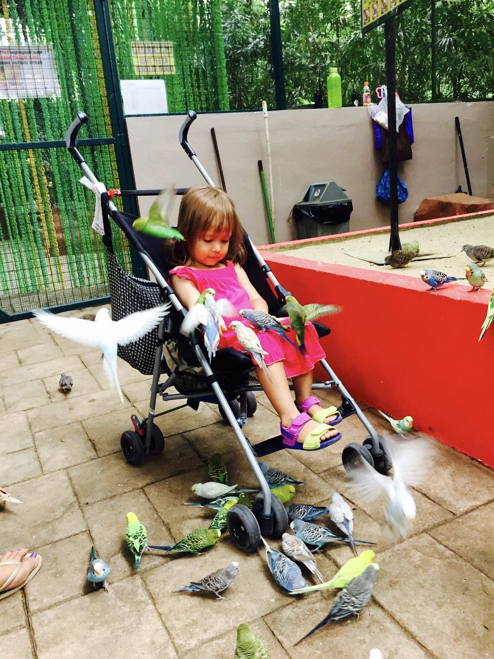 Batik&Bubbles_Isabelle Bird Park