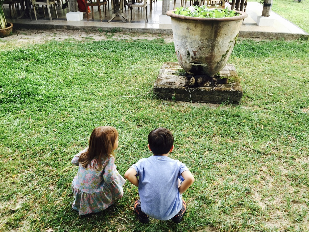 Batik&Bubbles_Bon Ton kids back
