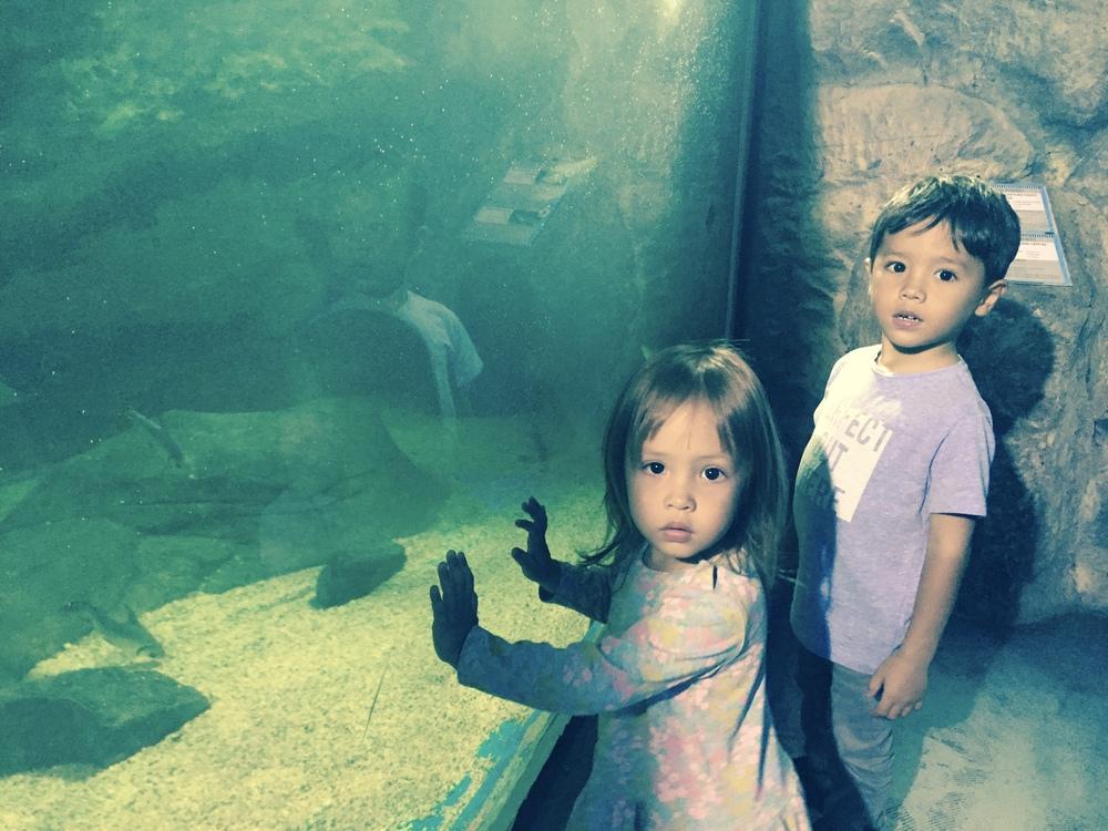 Batik&Bubbles_Underwater world kids