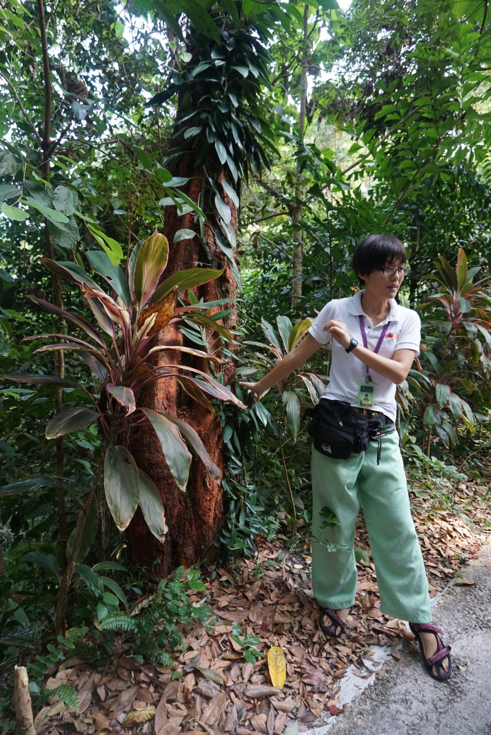 Our knowledgeable guide, Jo Leen
