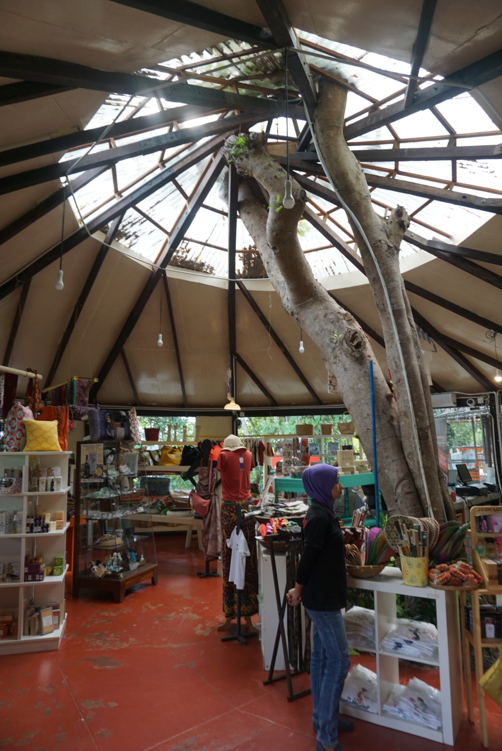 Love the way they built the gift shop around the tree!