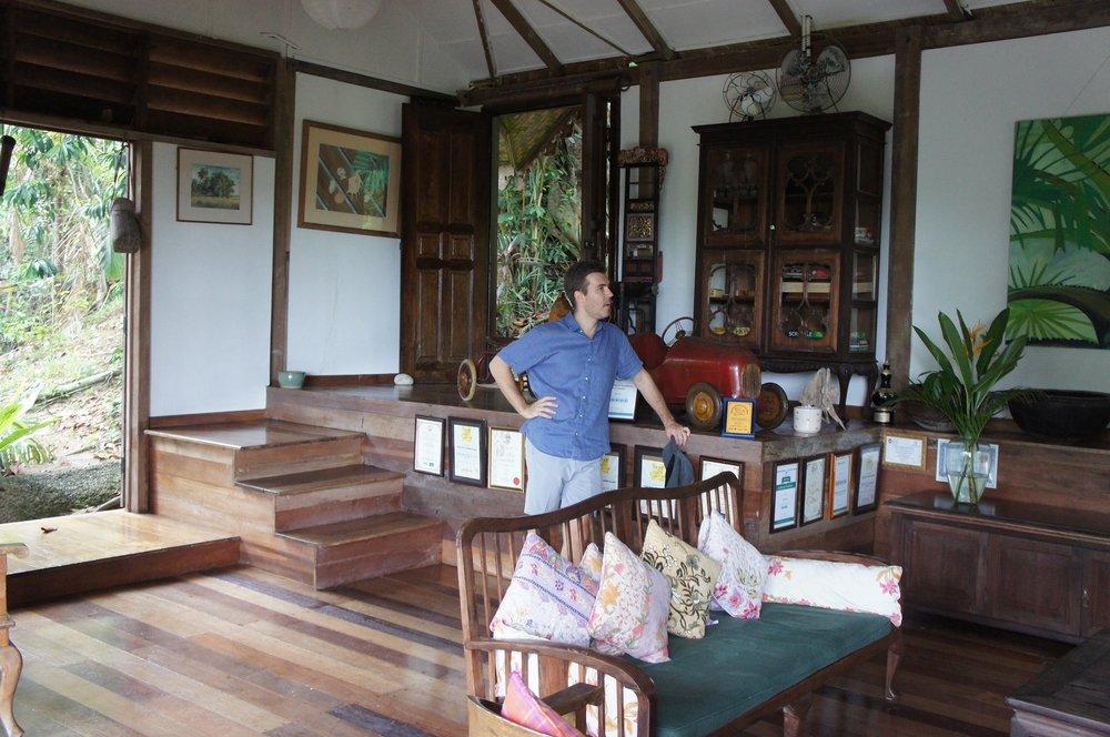 Batik&Bubbles_TigerRock24