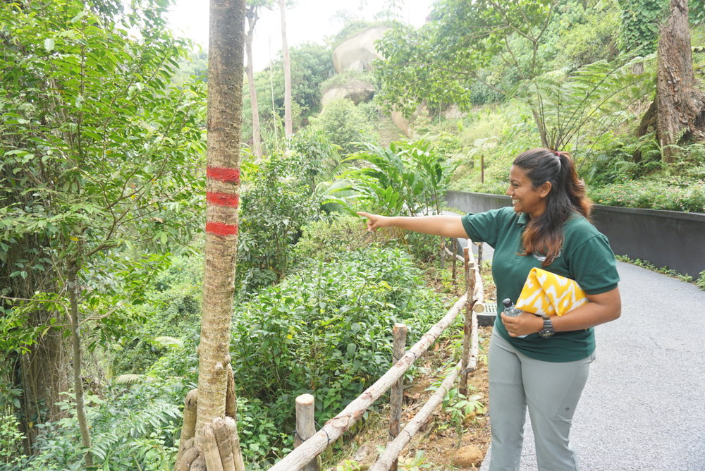 Our ranger makes a point to highlight the protection areas. Shakira is holding the Frankitas Lannie clutch!