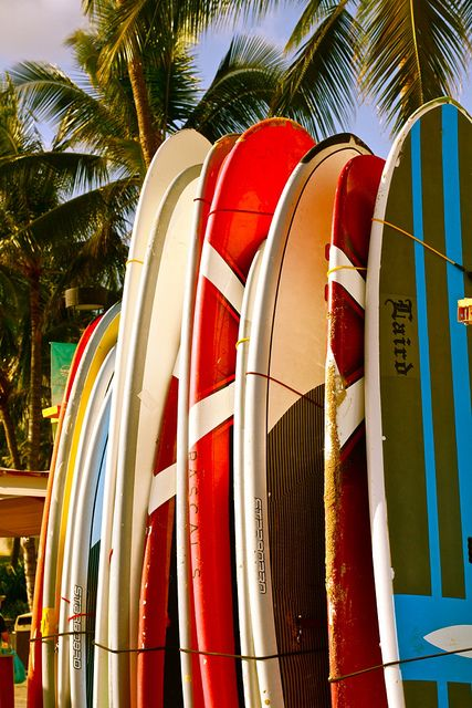 Waikiki is a great place to learn to surf
