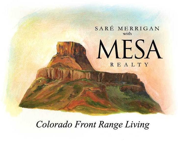 Mesa Realty copy.jpg