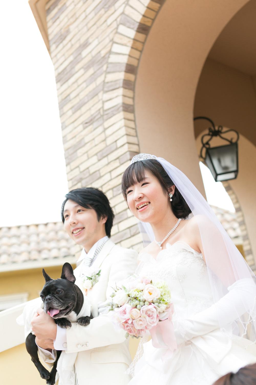 photo_00564.jpg
